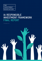 Front cover image for IA SRI Framework